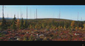 Fabula Outdoor - Metsästys Naruskassa, Hunting in Naruska