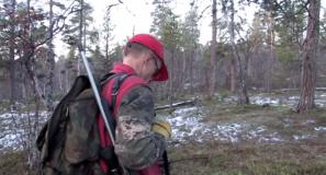 Karjalankarhukoira metsästyskoirana