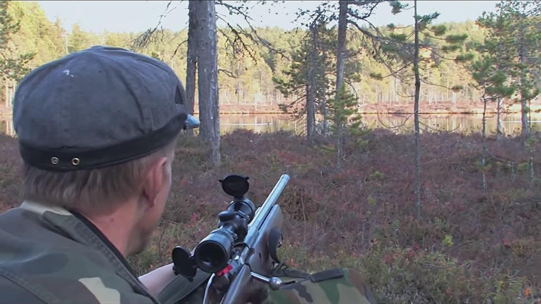Kuinka pääsen metsästäjäksi - #6 Aseen valinta